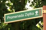 Rada Miasta podjęła uchwałę w sprawie promenady Ziętka