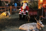 Chorzowski Jarmark Bożonarodzeniowy   Fotoreportaż
